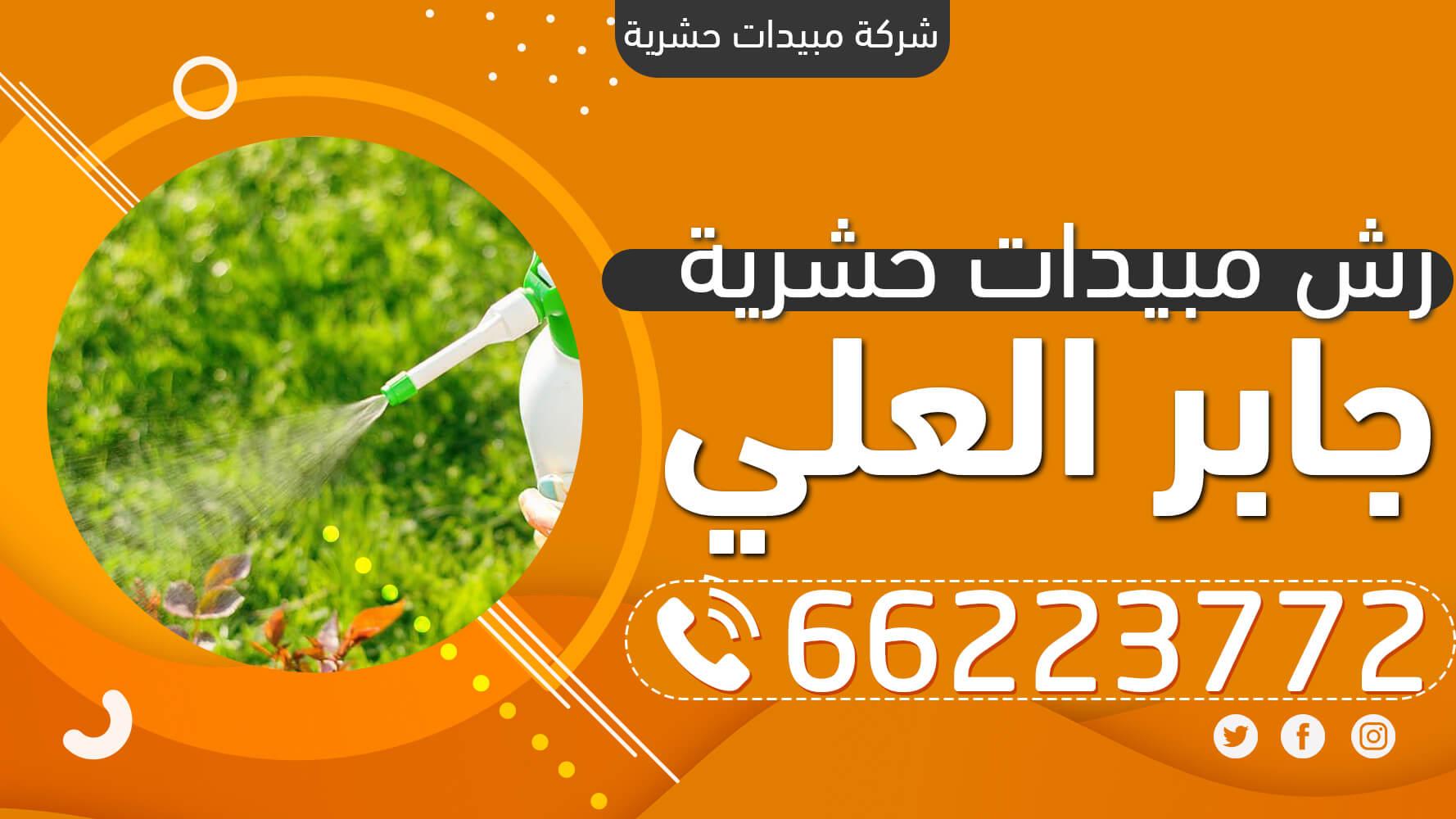 رش مبيدات حشرية جابر العلي