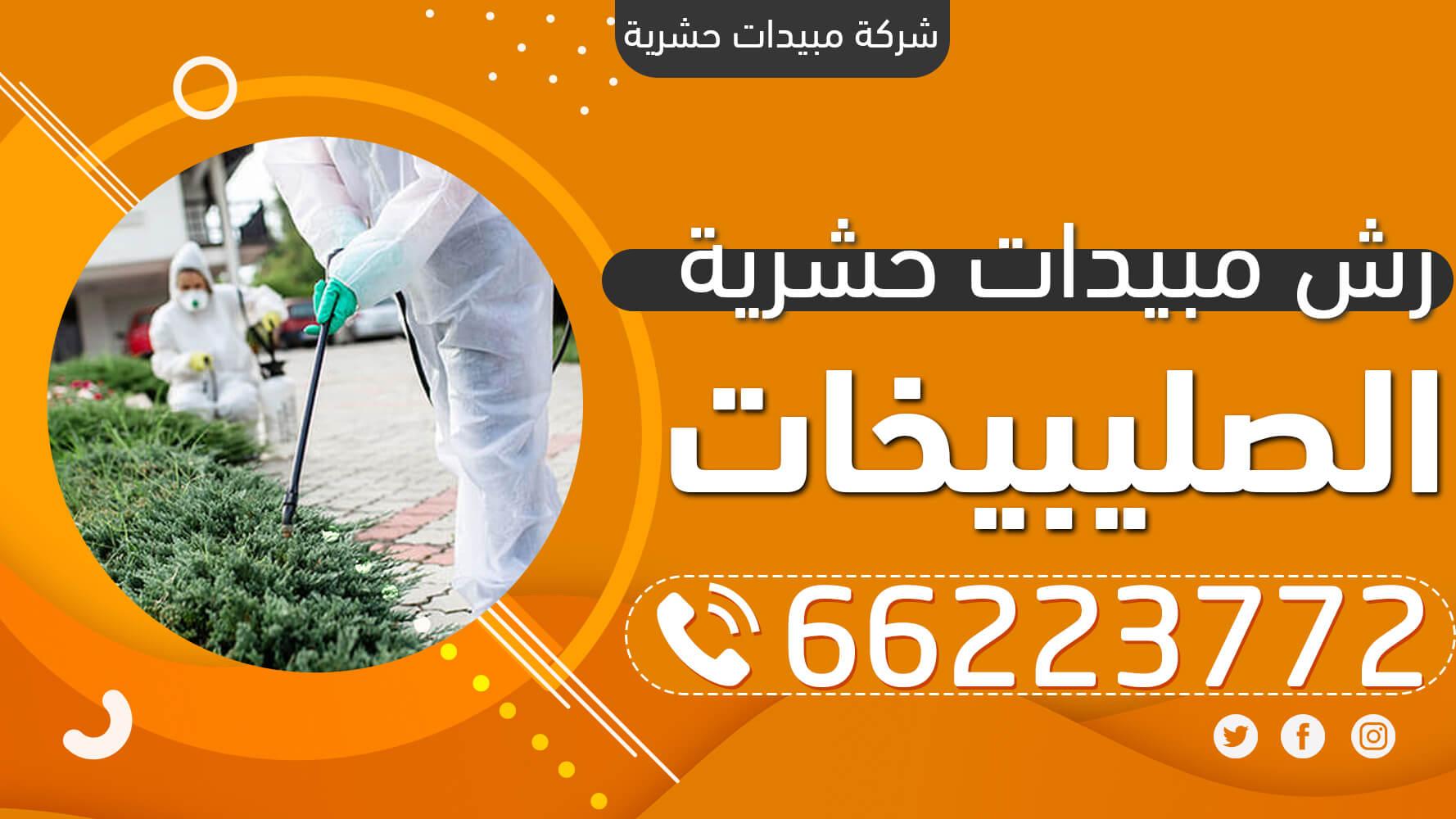 رش مبيدات حشرية الصليبيخات