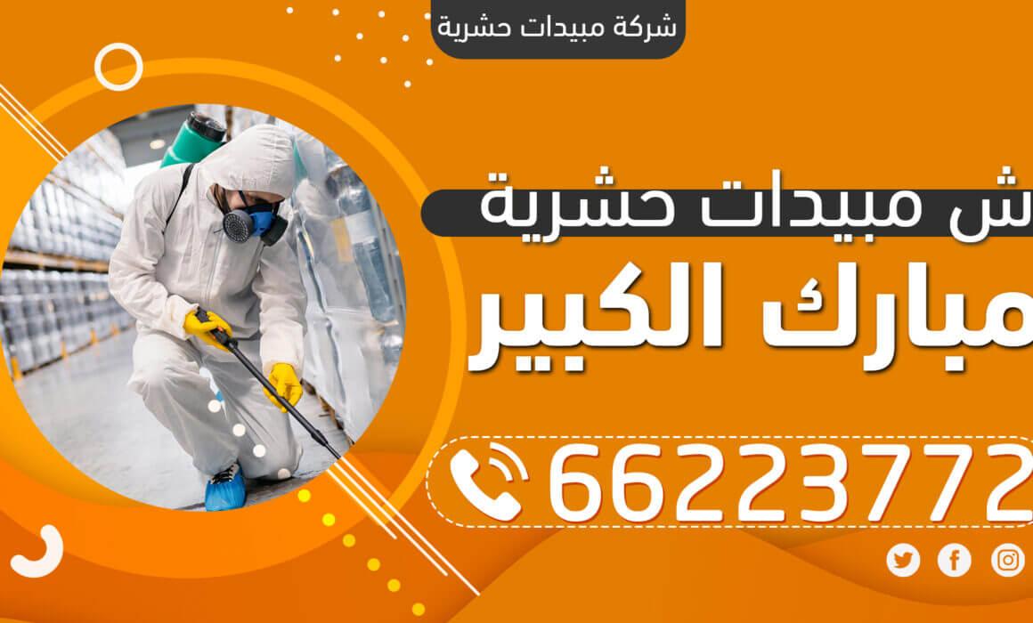 رش مبيدات حشرية مبارك الكبير